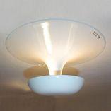 потолочный светильник 2004.03