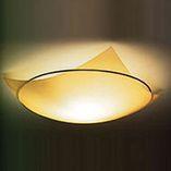 потолочный светильник 4814